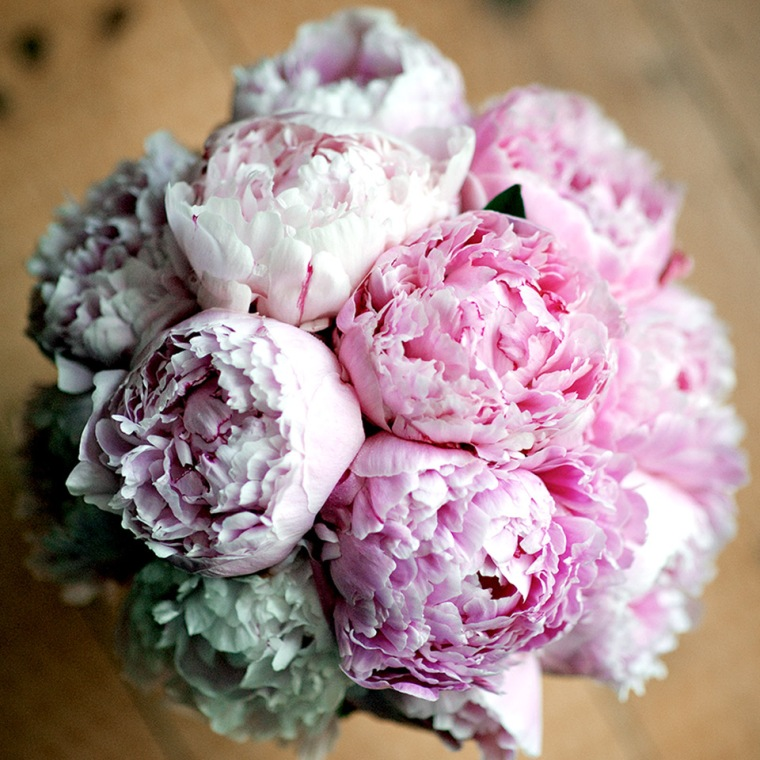 Olivia's bridal bouquet of perfect Sarah Bernhardt Peonies.