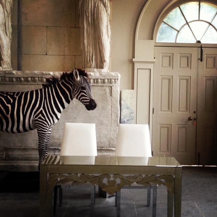 Zebra registrar